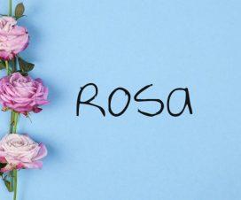 Origen del nombre Rosa