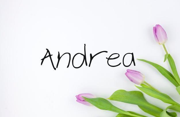 Significado De Andrea Nombres De Mujer