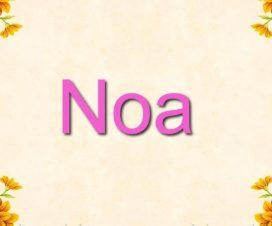 Origen del nombre Noa