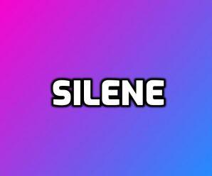 nombre Silene
